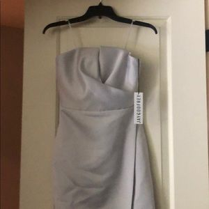 NWT JAYGODFREY Silver Darcy Dress